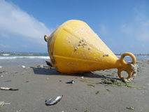 A yellow bouy brought to shore by the sea Stock Image