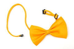 Yellow bowtie Royalty Free Stock Photography