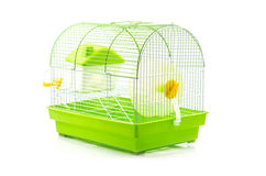A yellow box in a small yellow hamster cage. Stock Photo