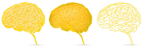 Yellow brain Royalty Free Stock Image