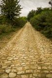 Yellow brick road. A rural way like a fantasy road of yellow bricks stock images