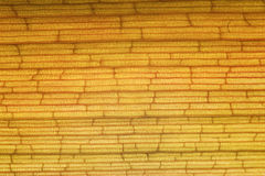 Yellow brick texture Royalty Free Stock Photography
