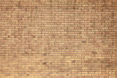 Yellow brick wall background Stock Photography