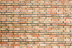 Yellow brick wall with red bricks. Texture Stock Images