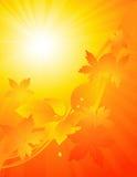 Yellow bright Autumnal background Stock Photo