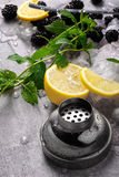 Yellow bright lemon, sappy blackberries, green leaves of mint and slices of ice on a light gray background. Blackberries, slices of yellow vivid lemon, green Royalty Free Stock Images
