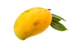 Yellow bright mango Royalty Free Stock Photo