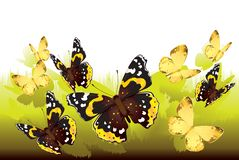 Butterflies flying out of the grass. vector illustration