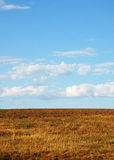 Yellow brown field and clouds. Yellow brown field and blue sky with clouds Royalty Free Stock Photography