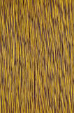 Yellow brown network cable Stock Image