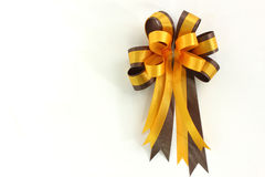 Yellow and brown ribbin bow on white background Stock Photography