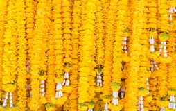 Yellow buddhism garland floral texture. Stock Images