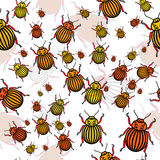 Yellow bugs Stock Images