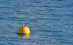 Yellow buoy Royalty Free Stock Images