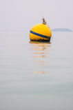 Yellow Buoy floats Stock Photos