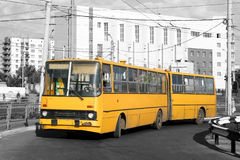 Yellow bus. An old yellow articulated bus Stock Photography