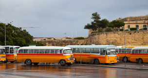 Yellow  buses. Malta. Yellow  buses at bus terminal at Valletta. Malta Royalty Free Stock Images