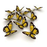 Yellow butterflies Royalty Free Stock Photos