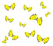 Yellow butterflies Royalty Free Stock Photography