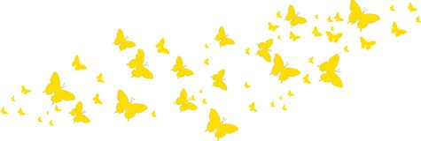 Yellow butterflies for greeting cards. And other kind of cards Stock Illustration