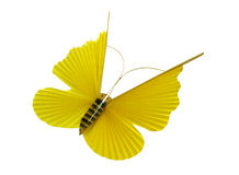 Yellow butterfly. On a white background Stock Image