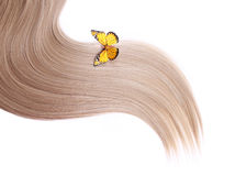 Yellow butterfly on blonde hair isolated on white