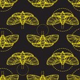 Yellow butterfly seamless vector texture Stock Photography