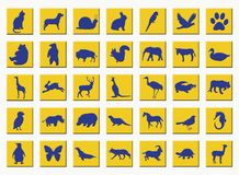 Yellow buttons with animals Stock Photo