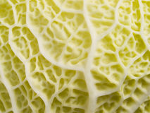 Yellow cabbage texture. Royalty Free Stock Photos