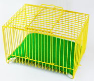 Yellow cage and green sheet for tiny pet Royalty Free Stock Photo
