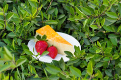 Yellow cake souffle with strawberry on the green grass Royalty Free Stock Photography
