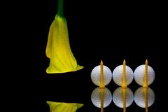 Yellow calla lily and golf ball on a black glass plate Royalty Free Stock Photography