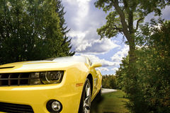 Yellow Camaro royalty free stock photography