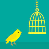 Yellow canary bird. Golden birdcage cell. Green background. Flat design style. Stock Photos