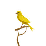 Yellow canary. Sits on a perch. bird vector illustration Stock Image
