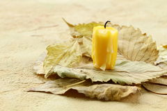 Yellow candle on the autumn leaves Stock Images