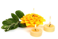 Yellow candles Royalty Free Stock Photos