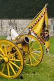 Yellow cannon and flag Royalty Free Stock Images