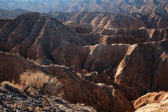 Yellow canyon in deserts of Kazakhstan Royalty Free Stock Images