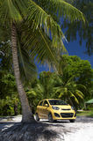 Yellow Car Parked Under Bright Palm Tree. Bright yellow car parked under palm tree at the entrance to a tropical beach Royalty Free Stock Image