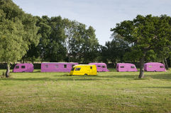 Yellow Caravan Amongst Pink Caravans. Colored caravans parked on grass - one yellow and five pink Royalty Free Stock Photos