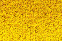 Yellow carpet texture Royalty Free Stock Photo