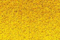 yellow carpet texture. yellow carpet texture royalty free stock photo t