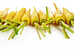 Yellow carrot Royalty Free Stock Photos