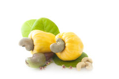 Yellow Cashew Nut Apple Stock Photo