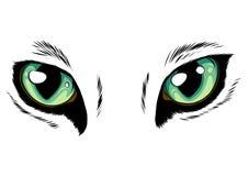 Free Yellow Cat Eyes Isolated On White Background. Vector Illustration Royalty Free Stock Image - 141278656