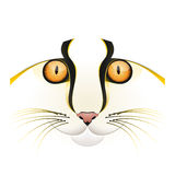 Yellow cat face vector. Vector illustration of a yellow cat face  on white Royalty Free Stock Photo