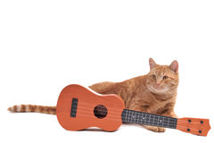 Yellow Cat with Guitar. Yellow Cat Laying of a floor with a Guitar Royalty Free Stock Photography