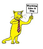 Yellow Cat. Cat holding a sign, 'working like a dog Stock Images