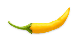 Yellow cayenne chili pepper isolated on white background. Cayenne sort of yellow chili pepper habanero or jalapeno isolated on white background. Closeup image of stock image
